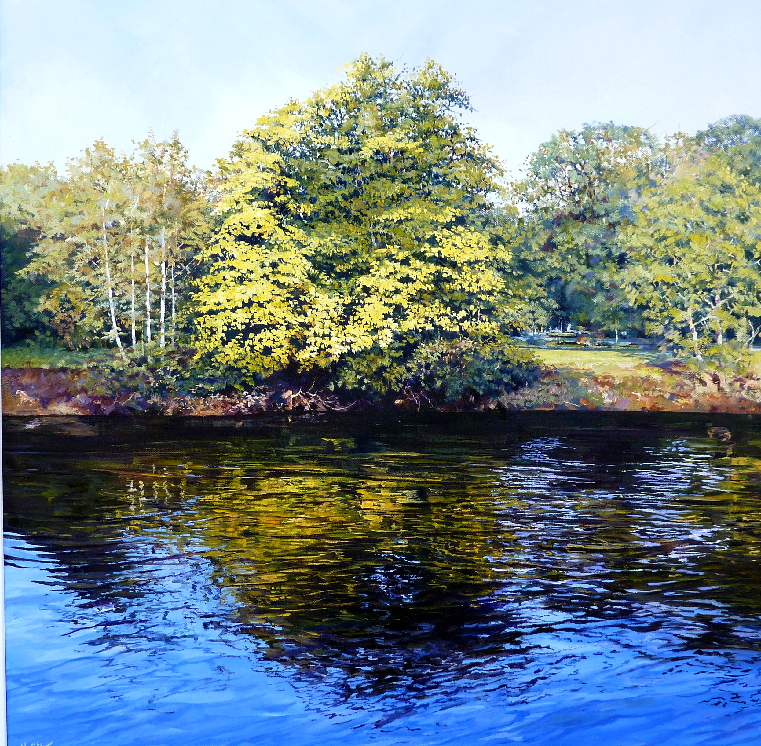 River Severn,Bewdley,oil,60cm x 60cm.