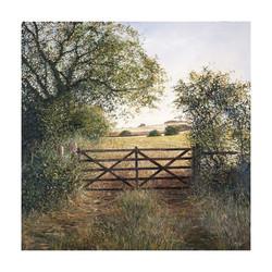 Harvest_Gate,60cm_x_60cm,£185.jpg