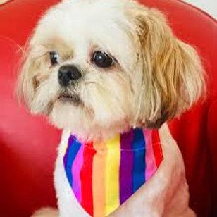 woof stuff rainbow bandana