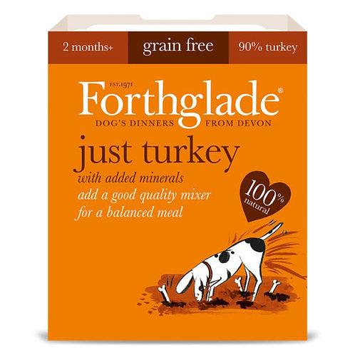 Forthglade just turkey 395g