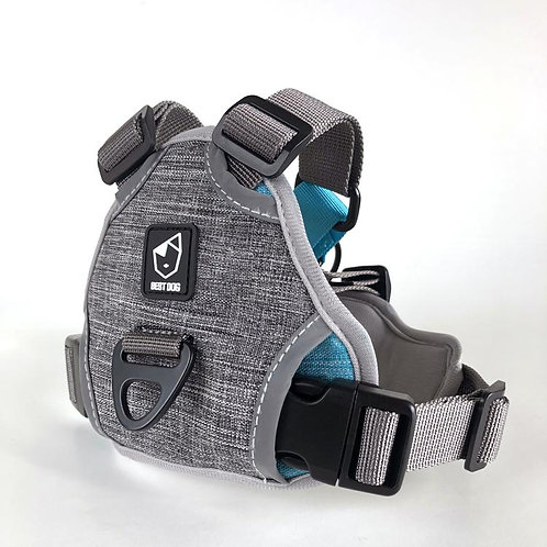 Best dog in line harness stone