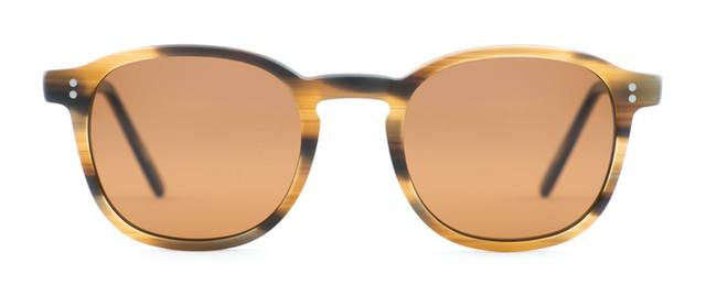 Pelton Warren Brown Sunglasses.jpg