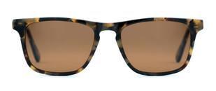 Pelton-Livernoise-Tortoise-Front-Sunglasses.jpg