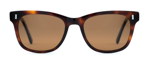 Pelton-Gratiot-Dark-Tortoise-Front-Sunglasses.jpg