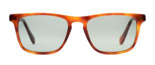 Pelton-Livernois-Havana-Front-Sunglasses.jpg