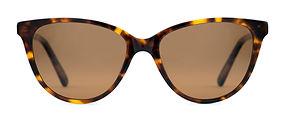 Pelton-Cass-Tortoise-Front-Sunglasses.jpg