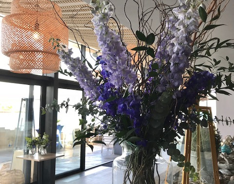 Delphiniums at Octopus