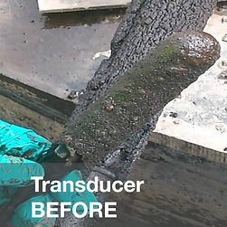 Leachate Scale on Transducer from landfill