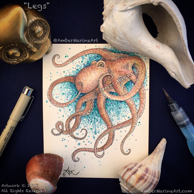 """Legs"" Octopus watercolor art by Amber Marine, // © 2018, All Rights Reserved"