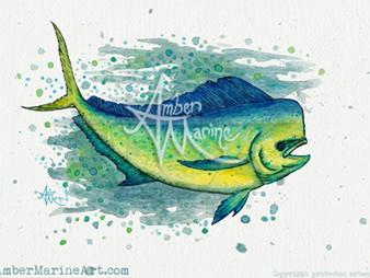 New Art! ~ Mahi Mahi Splash