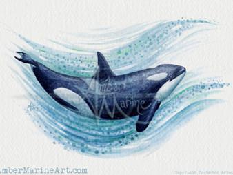 New Art: Orca Splash!