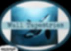 amber marine, painting, artist, wall art, marine life, ocean art, orca, killer whale, dreame