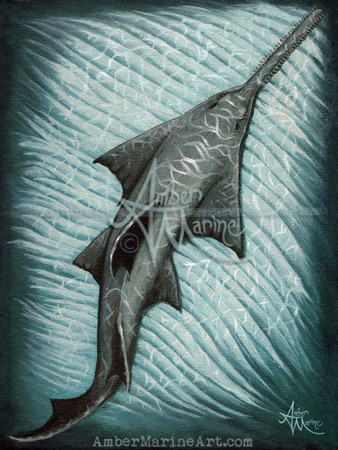 Sawfish acrlic painting by Amber Marine, © 2015, all rights reserved.