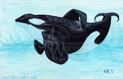 A Prayer for the Orca ~ 2013 ©
