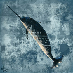 Jackson the Narwhal ~ 2015 ©
