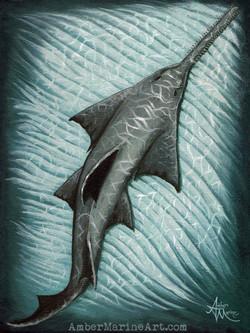 Sawfish Art Print