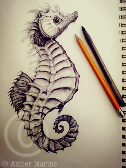 Fantasy Seahorse - Ink illustration artwork by Amber Marine