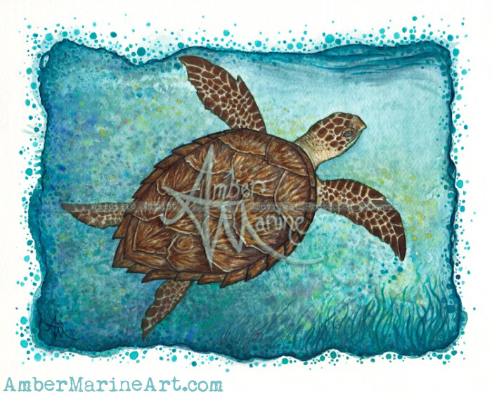Hawksbill Sea Turtle Art, Watercolor