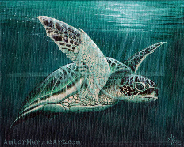 Moonlit Sea Turtle by Amber Marine