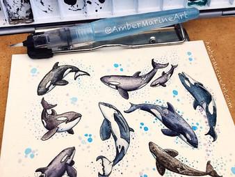 New Mini: Orca Pod in Watercolor