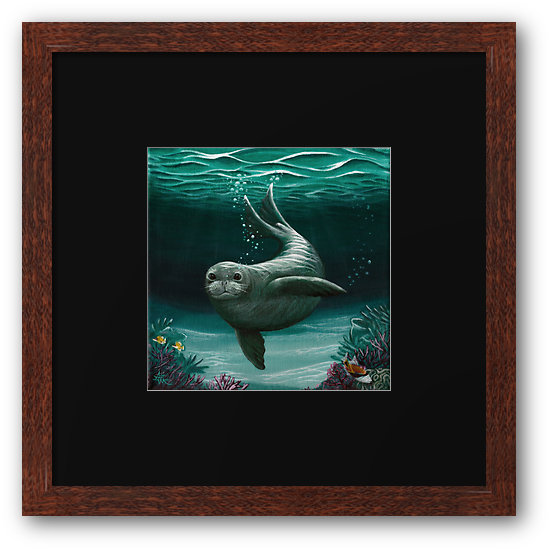 Hawaiian Monk Seal Framed Print