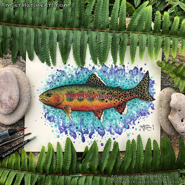 """California Golden Trout """"California GOld"""" watercolor and Ink by Amber Marine. © 2018, all rights reserved."""