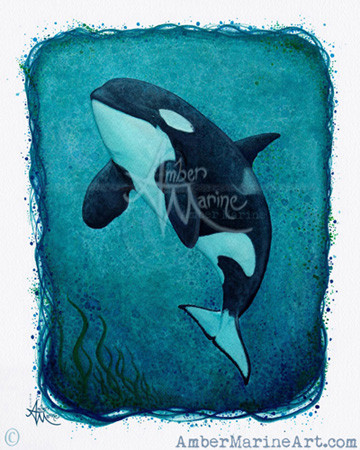"Watercolor painting ~ Art of J2 ""Granny"" of the Southern Resident Killer Whales by Amber Marine, © 2016, all rights reserved"