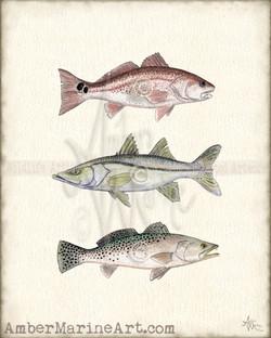 """""""Inshore Slam"""" Fish Painting"""