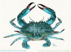 Blue Crab ~ 2013 ©