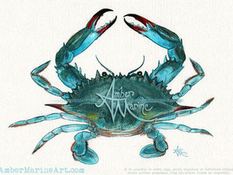 Throwback Art: Blue Crab Watercolor