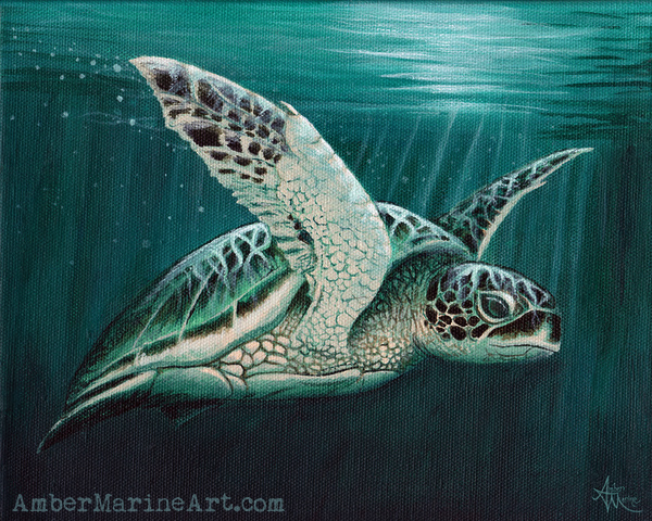 Moonlit Sea Turtle Art Print