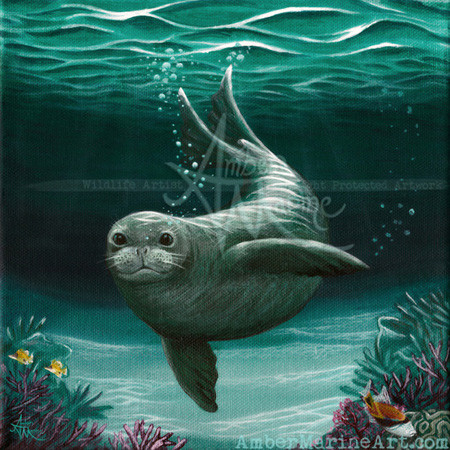 Hawaiian Monk Seal acrylic painting by artist Amber Marine, © 2015, all rights reserved