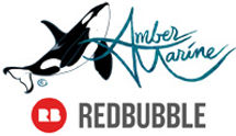 amber marine, painting, orca, the dreamer, killer whale, art, redbubble