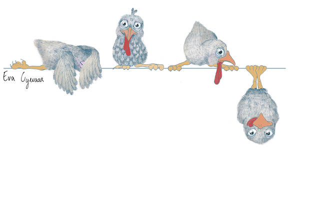 chicks on the line