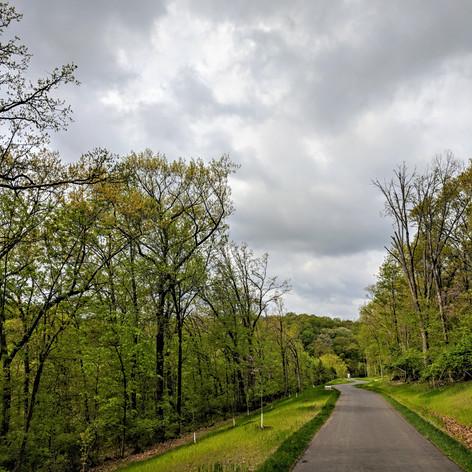 Cliff Cave Park - St. Louis, MO