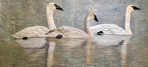 Swans - Bridget.jpg