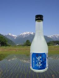 Kinran Kurobe Ginjo Namachozou Shu 生貯醸酒