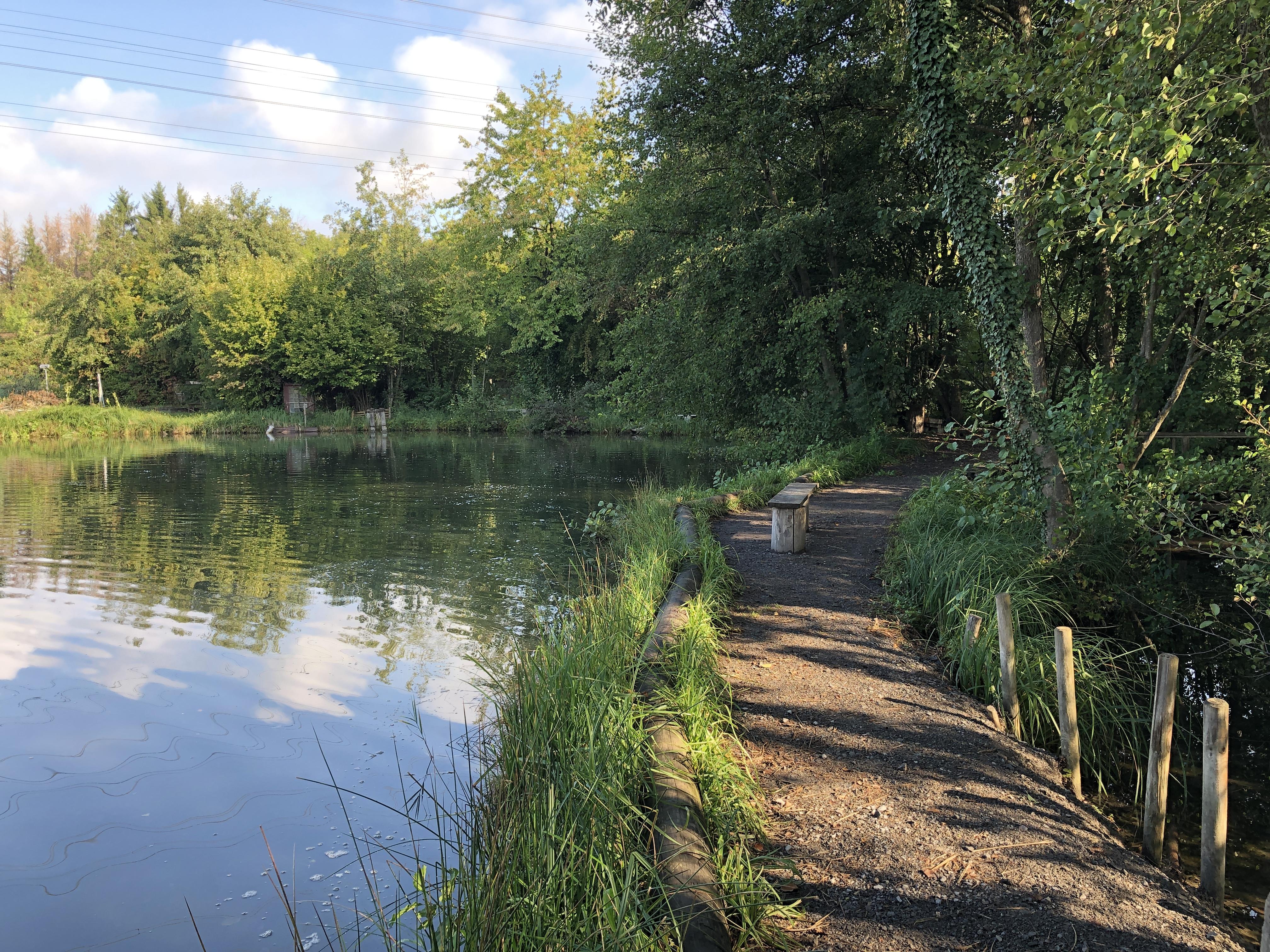 Forellensee und Forellenzucht Angelpark Ötisheim, Baden-Württemberg