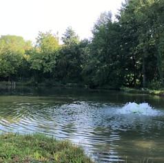 Forellenangeln Baden-Württemberg Angelpark ötisheim
