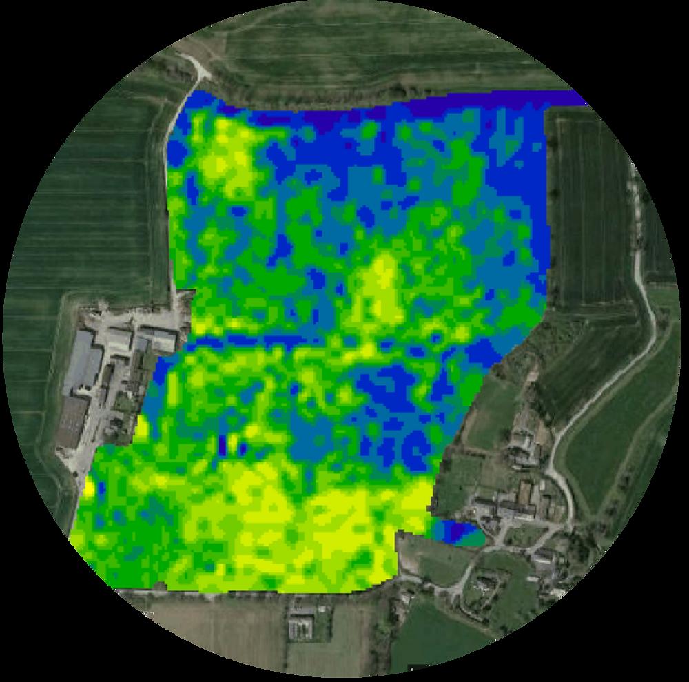 Carte satellite de biomasse