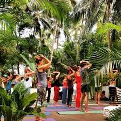 ashyana goa yoga retreat.jpeg