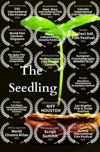 the_seedling.jpg