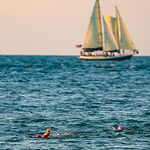 Sand Key Beach Park Sailboat Open Water Swim
