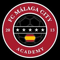 FCMC-Logo-Academy.png