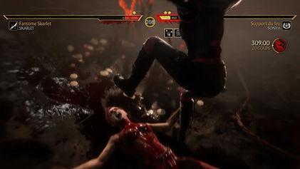 Mortal Kombat 11 sonya/skarlet
