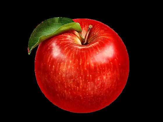 Apfel Elstar 10 Beutel á 2,5kg  (S)