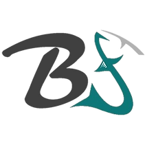 Bakkan Favicon without background.png