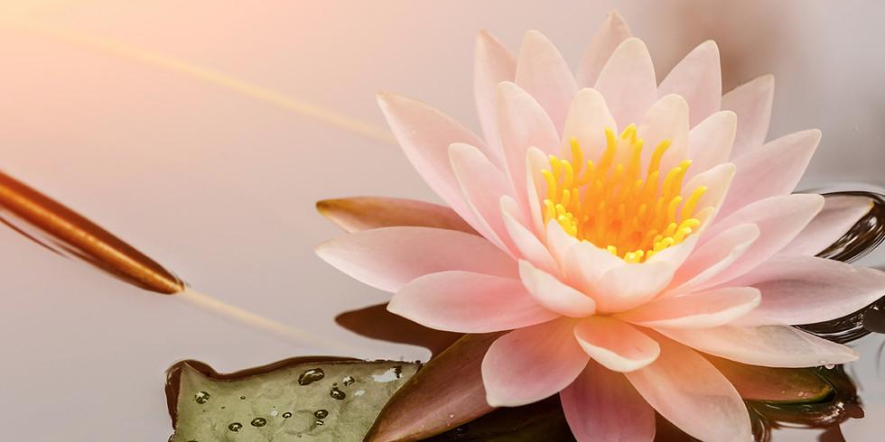 Day of Dharma - Dharma Center of Trikaya Buddhism