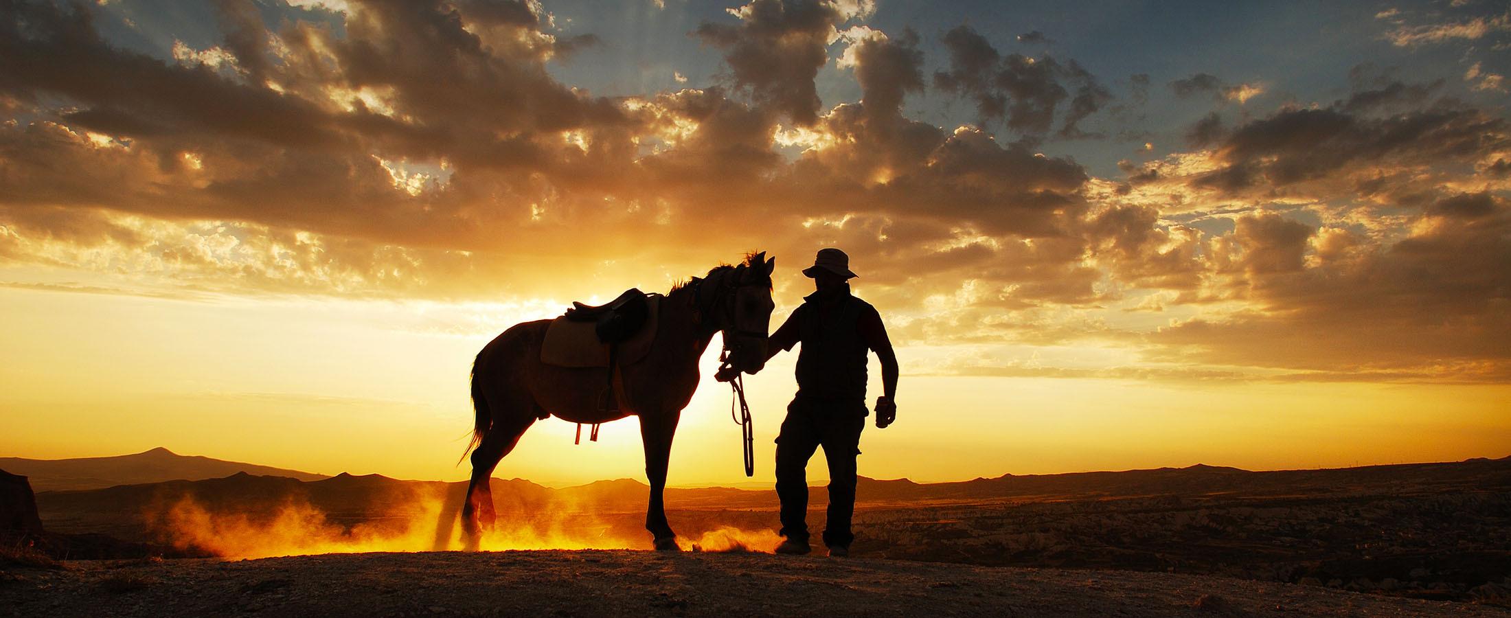 2 Hour Horse Trek