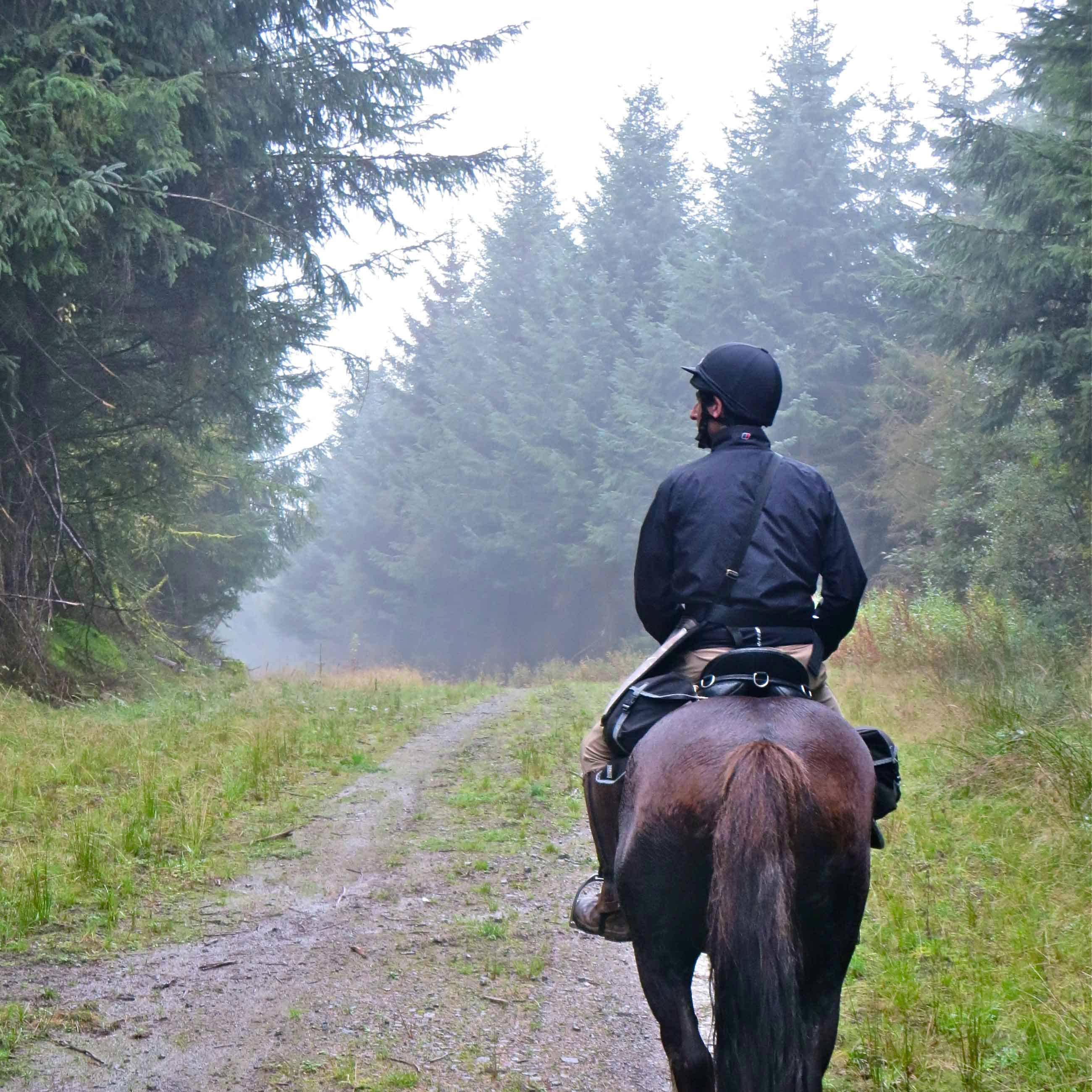 1.5 Hour Horse Trek